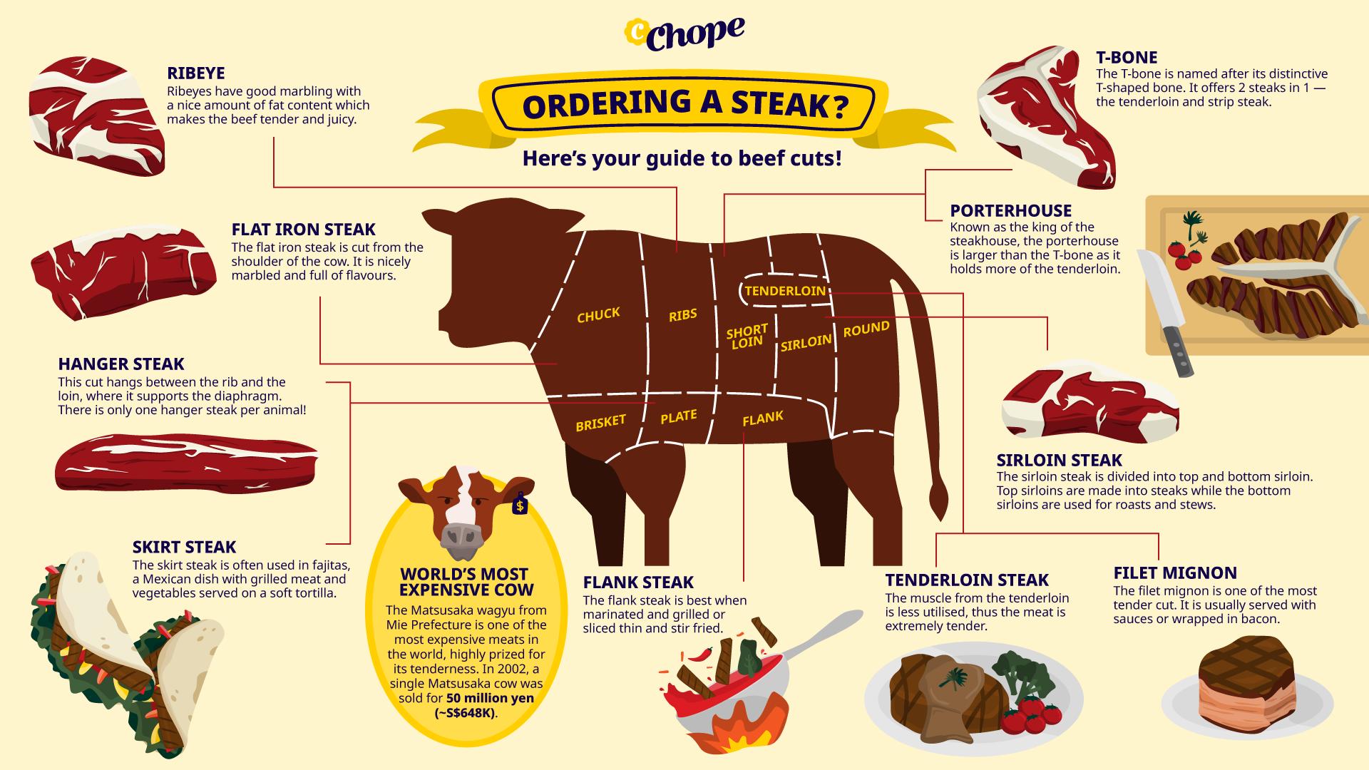 Steak Infographic