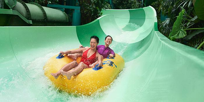 Adventure Cove Waterpark booking